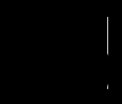 XLife